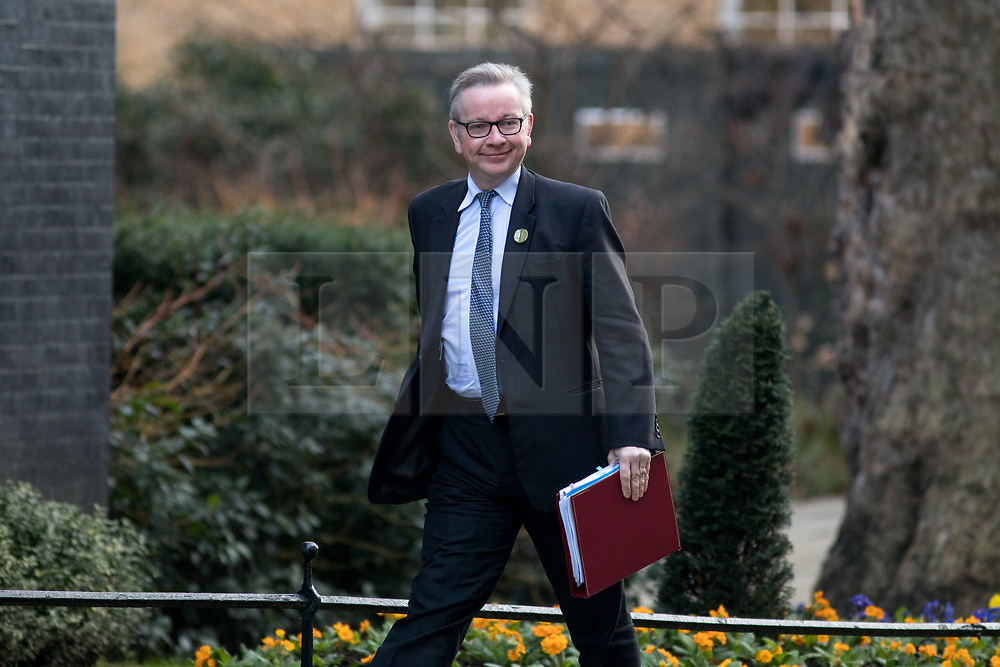 © Licensed to London News Pictures. 06/02/2018. London, UK. Environment, Food and Rural Affairs Secretary Michael Gove arriving in Downing Street to attend a Cabinet meeting this morning. Photo credit : Tom Nicholson/LNP