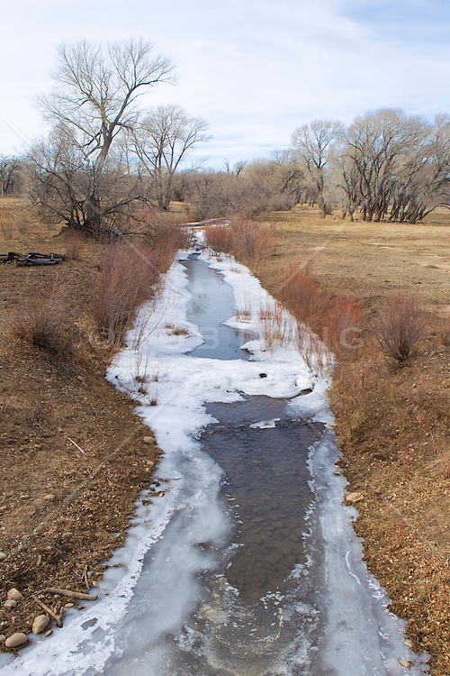 frozen stream melting in rural New Mexico