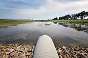 Nederland, Wolvega, 28-5-2018Het friese waterschap, provincie Friesland, it fryske gea en de gemeente westellingerwerf hebben een nieuw natuurgebied gecreeerd ten zuiden van wolvega waar bij hevige regenval ook het hemelwater naartoe wordt afgevoerd. De riolering komt hier uit op plassen die na elkaar vollopen met water. Riet zorgt voor natuurlijke zuivering en in het gebied erachter kan de natuur zijn gang gaan. Arcadis .Foto: Flip Franssen