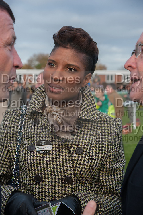 DENISE LEWIS, Hennessy Gold Cup, The Racecourse Newbury. 30 November 2013.