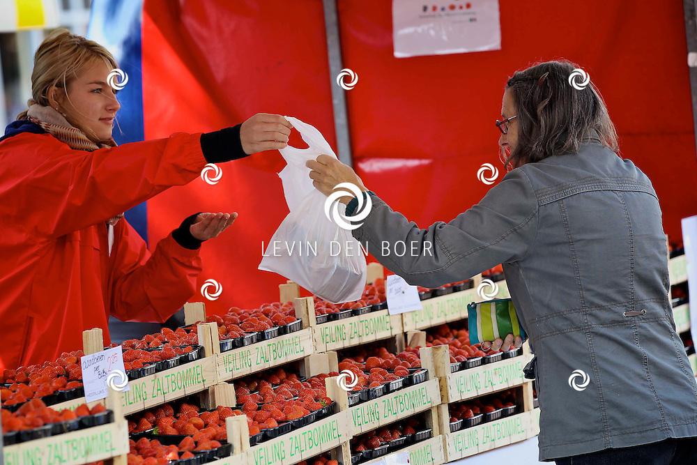 ZALTBOMMEL - De jaarlijkse Aardbeiendag is weer op de Markt van Zaltbommel geopent door de Aarbeienprinses en de Wethouder van Zaltbommel. FOTO LEVIN DEN BOER - PERSFOTO.NU