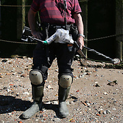 "Mudlarker Malcolm ""Mack"" Macduff looks for items on the banks of the River Thames in London, Britain May 24, 2016. When the river Thames is at low tide, mudlarkers scour the shore for historical artefacts and remains from there City of London's ancient past. Finds can date back to Roman times to when the city was found up until more recent times. Anyone can walk along the river and look for finds, but the uses of metal detectors and digging is restricted. Mudlarkers need to be licences by the Port of London Authority. All find should be register with the Museum of London. REUTERS/Neil Hall"