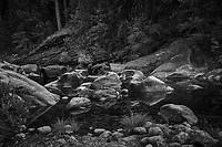 Merced River Meditation. Image taken with a Nikon D3 camera and 24-70 mm f/2.8 lens (ISO 200, 36 mm, f/11, 1.6 sec). Camera mounted on a tripod. Monochrome Version.