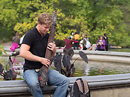 Musician at Bethesda Terrace  in Central Park