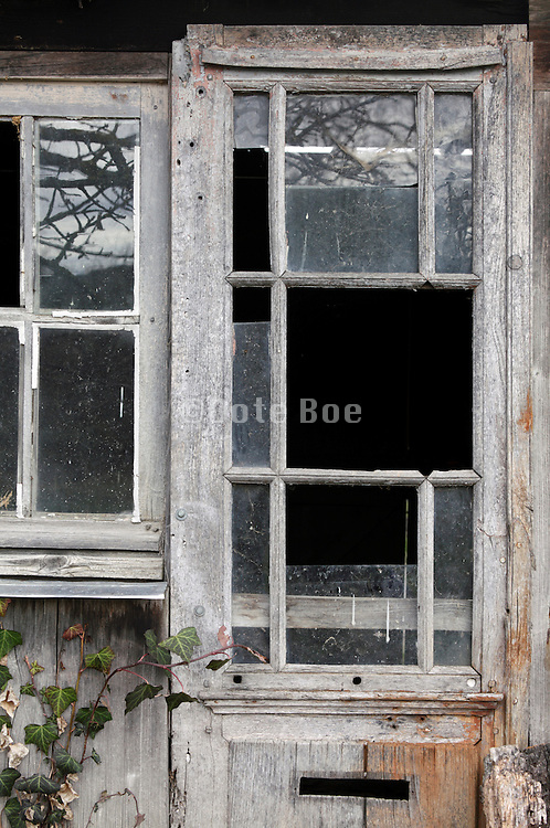 broken door with mail slot and window in a abandoned shed