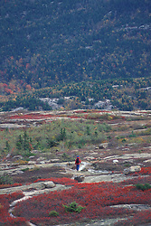 Acadia N.P., ME. Hiking on Sargent Mountain. Fall foliage.