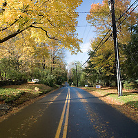 Secondary road in the fall, Connecticut, USA