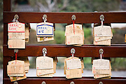 Prayer notes of people's hopes and wishes at the Dream Buddha at Big Wild Goose Pagoda, Xian, China