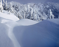 View from Kulshan Ridge in winter, Heather Meadows Recreation Area, Mount Baker Snoqualmie National Forest Washington USA