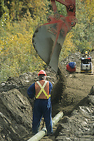 Whitehorse Construction, laying pipe, Yukon