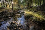 In early Autumn, a small stream rushes through the camping grounds at Covão da Ametade, in the Serra da Estrela mountain range, in Portugal.