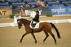 Trabert Angelika (GER) - Ariva Avanti<br /> Alltech FEI World Equestrian Games <br /> Lexington - Kentucky 2010<br /> © Hippo Foto - Leanjo de Koster