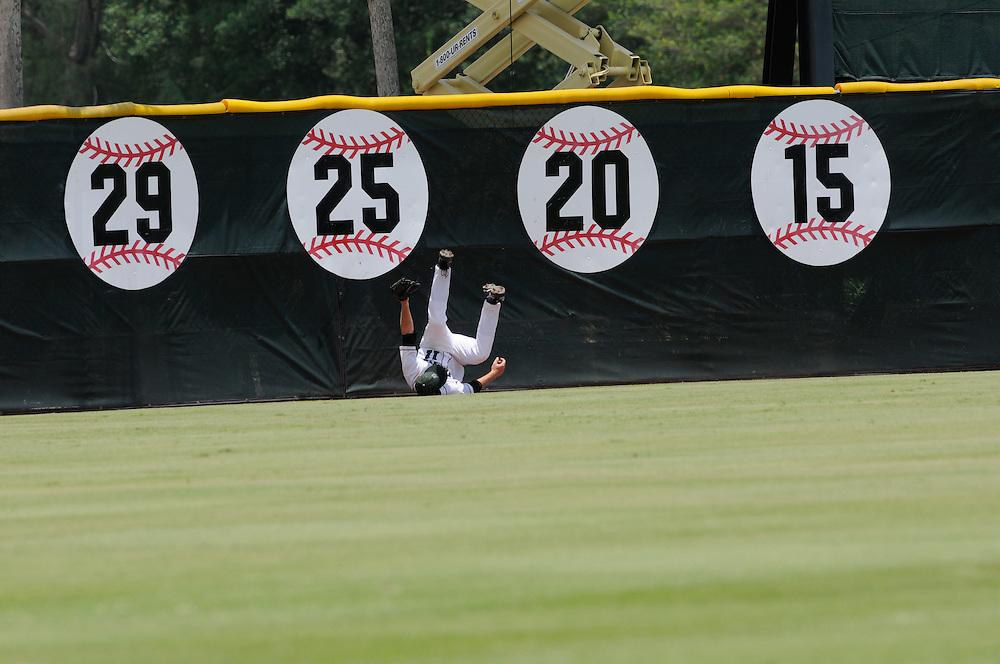 2010 Dartmouth Baseball