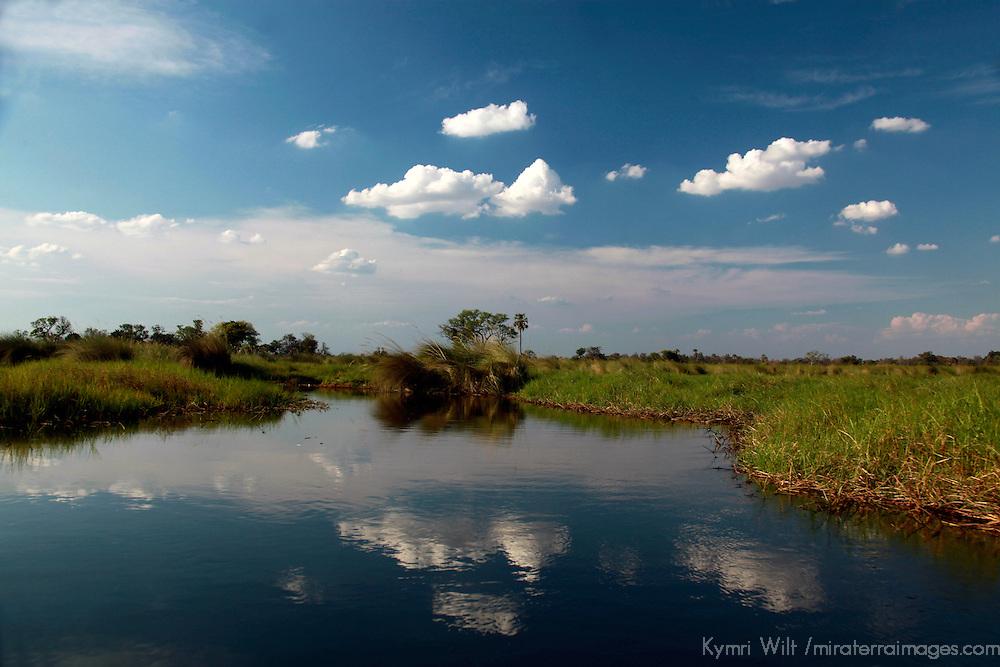 Africa, Botswana, Okavango Delta. Waterways and reflections of the Okavango Delta.