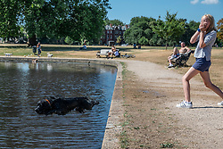 © Licensed to London News Pictures. 23/07/2018. London, UK. Charlie Sutherland, 12, throws a stick for Puffin the dog into the boating pond on Clapham Common, south London, as hot weather continues in the capital. Forecasters are predicting record temperatures this week. Photo credit: Rob Pinney/LNP