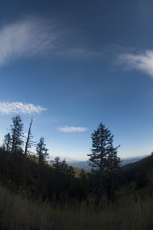 Dusk on Mt. Ashland, Rogue River–Siskiyou National Forest, Oregon, US