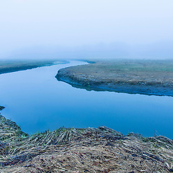 A tidal creek winds through a Rye, New Hampshire salt marsh on a foggy morning.