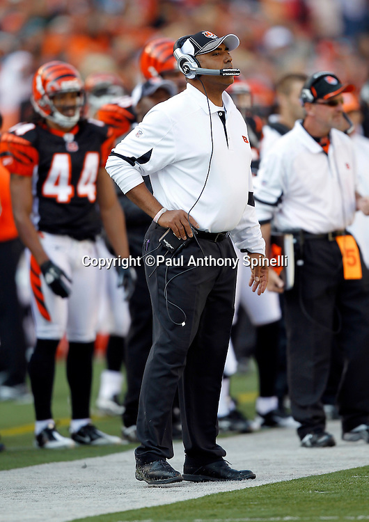 Cincinnati Bengals head coach Marvin Lewis looks on during the NFL week 8 football game against the Miami Dolphins on Sunday, October 31, 2010 in Cincinnati, Ohio. The Dolphins won the game 22-14. (©Paul Anthony Spinelli)