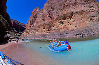 Confluence of the Colorado River and Havasu Creek, Whitewater rafting trip (oar trip) on the Colorado River in Grand Canyon, Grand Canyon National Park, Arizona USA