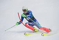 Dartmouth Carnival alpine slalom.  ©2016 Karen Bobotas Photographer