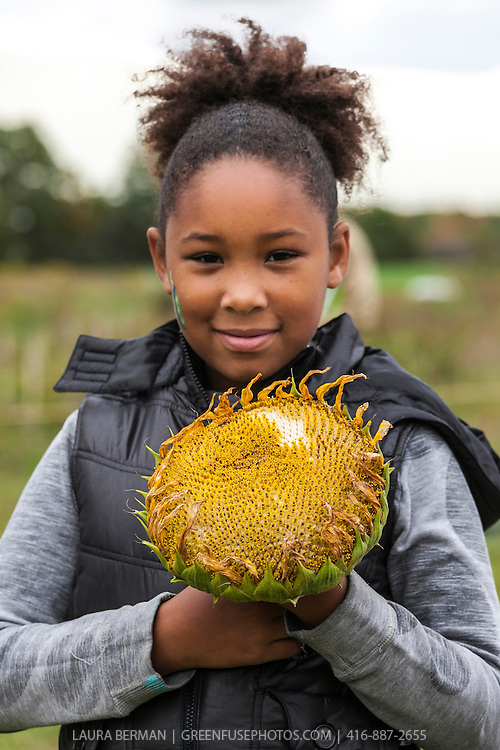A  young teenage African American girl holds a large sunflower, the shape of the flower echoed in her hair.
