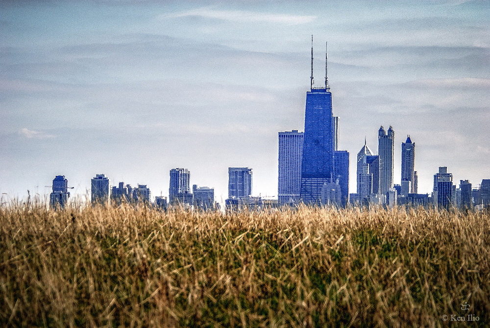 Downtown Chicago as seen from the bird sanctuary in Montrose Point.