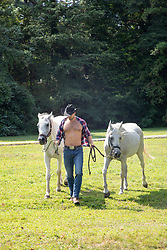 hot muscular cowboy with open shirt holding two white horses outdoors