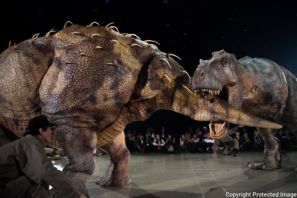 The Dino-Safari exhibition featuring these robotic dinosaurs on April 25th in Tokyo, Japan.<br /> The rubber creatures make use of a 'Dino-Tronics' mechanism, which allows them to smoothly and quietly walk around, and move their heads and jaws. However the dinosaurs are not completely autonomous - performers encased in the models control their movements. The animatronics were created by Japanese firm ON-ART Corp. The exhibit, set to open on Apr. 26 at Hikarie Hall in Tokyo's Shibuya district, will feature the 4.8m tall Raptor, the 8m Tyrannosaurus Rex and the 6.5m Triceratops..25/04/2017-Tokyo, JAPAN