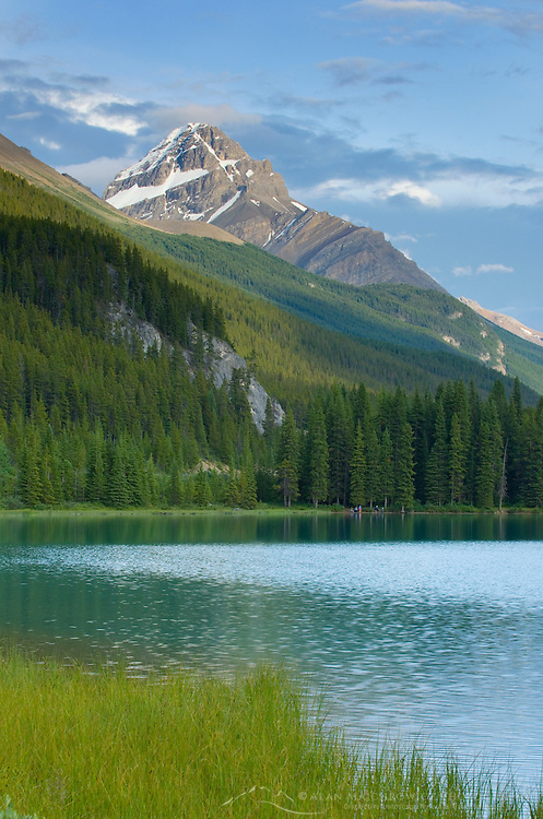 Mount Noyes seen from Waterfowl Lake, Banff National Park Alberta Canada