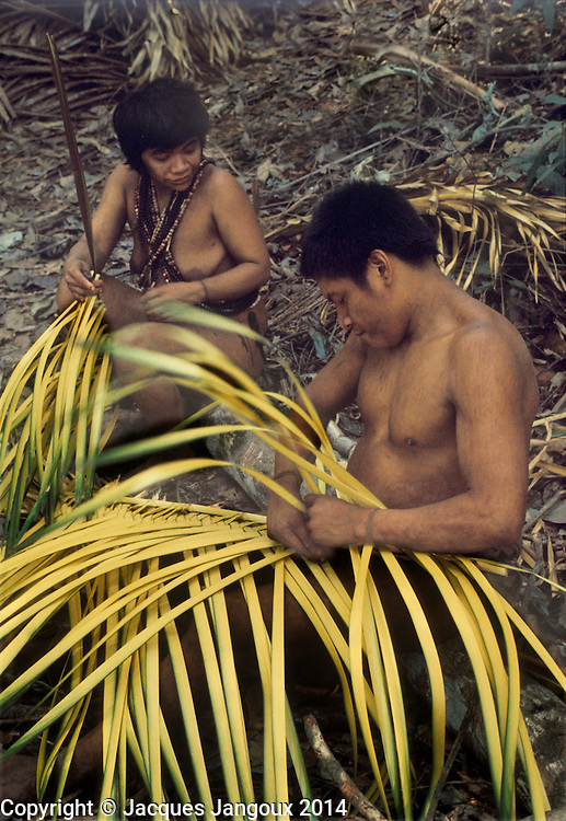 Use of forest products by Indians of Guiana Highlands of Venezuela: husband and wife weaving baskets from immature palm leaves.