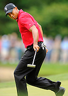 Tiger Woods starts to celebrate his birdie putt on the 10th green in the final round of the AT&T National PGA golf tournament at Congressional Country Club in Bethesda, Maryland.