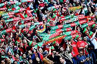 Tifosi Portogallo Supporters <br /> Saint-Etienne 14-06-2016 Stadium Geoffroy-Guichard Football Euro2016 Portugal-Iceland / Portogallo-Islanda Group Stage Group F<br /> Foto Massimo Insabato / Insidefoto
