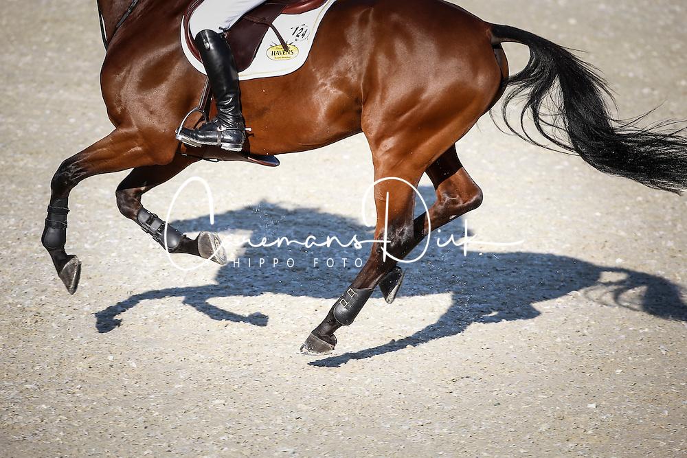 Dubbeldam Jeroen (NED) - Zenith SFN<br /> Class 2 - La Vanguardia Trophy<br /> Furusiyya FEI Nations Cup Jumping Final<br /> CSIO Barcelona 2013<br /> © Dirk Caremans