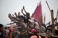 A group of Naga Sadhu gather along the fence line to waive to the corwd of millions at the Kumbh Mela.