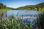 Cook Lake, Sundance, Devils Tower, WY, Wyoming