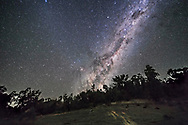 The southern Milky Way and galactic centre rising on an April night in Australia, with the Dark Emu rising and now cleared the trees with hsi head, neck and body visible. Scorpius has risen. The faint glow at left is the Zodiacal Band.<br /> <br /> While it looks like the Milky Way is casting light across the ground, the bright ground is from lights from a nearby house on briefly for a few seconds. <br /> <br /> This is a stack of 8 x 45-second exposures for the ground, mean combined to smooth noise, and one 45-second untracked exposure for the sky, all with the Rokinon 14m lens at f/2.5 and Canon 6D at ISO 3200. Taken as part of a 500-frame time-lapse sequence.