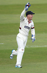 Somerset's Luke Ronchi celebrates his fifth catch of the day. - Mandatory byline: Alex James/JMP - 07966386802 - 09/09/2015 - FOOTBALL -  - The County Ground - Taunton  - Somerset v Hampshire - LV CC -