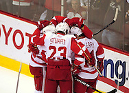 Apr 23, 2010; Glendale, AZ, USA; The Detroit Red Wings celebrate after left wing Drew Miller (20) scores a goal during the first period of game five in the first round of the 2010 Stanley Cup Playoffs at Jobing.com Arena.  Mandatory Credit: Jennifer Stewart-US PRESSWIRE