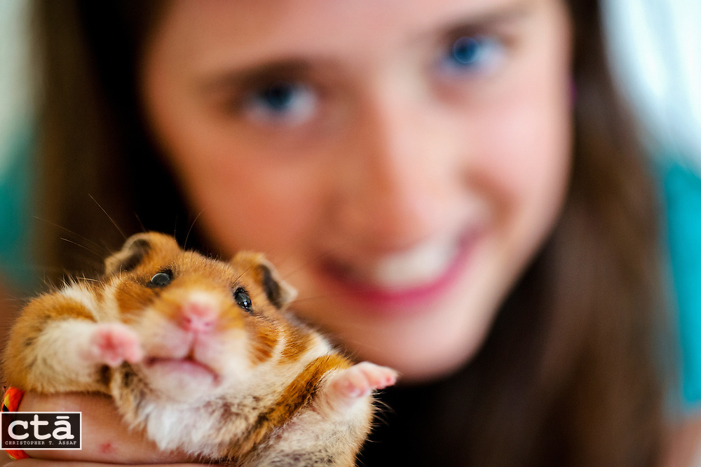 Julia Hamilton wanted a pet, and settled on Nutmeg, a hamster she adopted in January from the Carroll County Humane Society. The Sykesville 11-year old had Nutmeg, age unknown, take part in her 5th-grade science experiment.