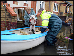Pearl Mewes and her dog Mitzi are recued by a local resident in Egham, Surrey,  United Kingdom, as Floods Hit Britain, Thursday, 13th February 2014. Picture by Andrew Parsons / i-Images