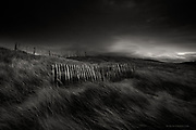 Awarded a discretionary MERIT in the 29th SUN (Shot up North) Awards for full time professional photographers<br />