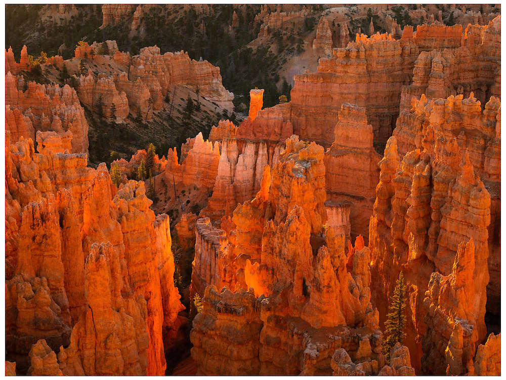 Bryce Canyon National Park, UT 10/31/2015<br />