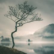 Loch Chon, the Trossachs, Scotland