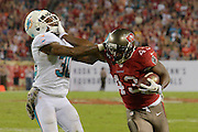 Tampa Bay Buccaneers running back Bobby Rainey (43) stiff arms Miami Dolphins strong safety Chris Clemons (30) as he runs up field during the Bucs 22-19 win at Raymond James Stadium on Nov. 11, 2013 in Tampa, Florida. <br /> <br /> &copy; 2013 Scott A. Miller