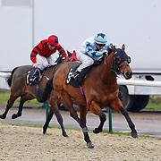 Paphos and David Probert winning the 12.55 race