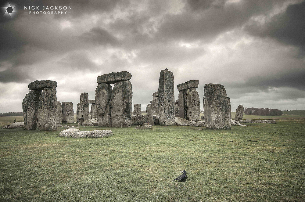 A crow surveys the ancient landscape of Stonehenge, the prehistoric monument located in Wiltshire, England