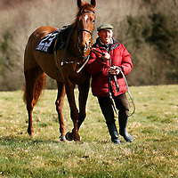 John Lynch with Salford Valley at the Dromoland Point to Point on Sunday.<br /><br />Photograph by Yvonne Vaughan.