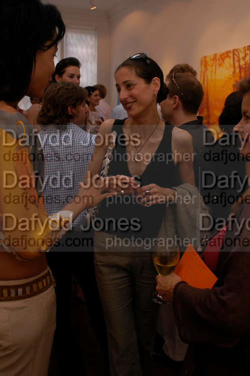 Sally Albermarle. Adam Ball ' All that Glitters' private view hosted by Manfredi della Gherardesca and Patrizia Papachristidis .  Charles St. London. 19 June 2005. ONE TIME USE ONLY - DO NOT ARCHIVE  © Copyright Photograph by Dafydd Jones 66 Stockwell Park Rd. London SW9 0DA Tel 020 7733 0108 www.dafjones.com