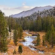 Rock Creek, Eastern Sierra, California