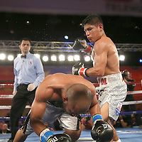 Jonathan Vidal falls to the mat after a punch by Ricardo Rodriguez during a Telemundo Boxeo boxing match at the A La Carte Pavilion on Friday,  March 13, 2015 in Tampa, Florida. Rodruguez won the bout after it was stopped by the corner of Vidal. (AP Photo/Alex Menendez)